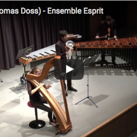 Thomas Doss: Neue Werke bei YouTube